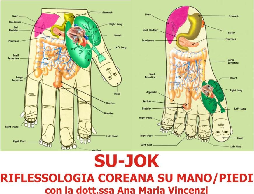 16 Dicembre: introduzione alla riflessologia coreana delle mano – piede SUJOK